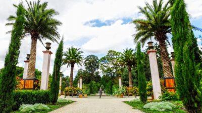 Palmengarten im Kurpark von Bad Pyrmont